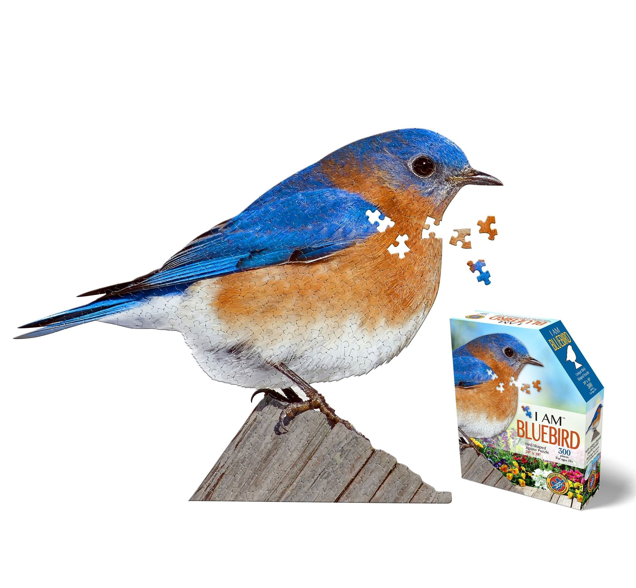 I Am Bluebird