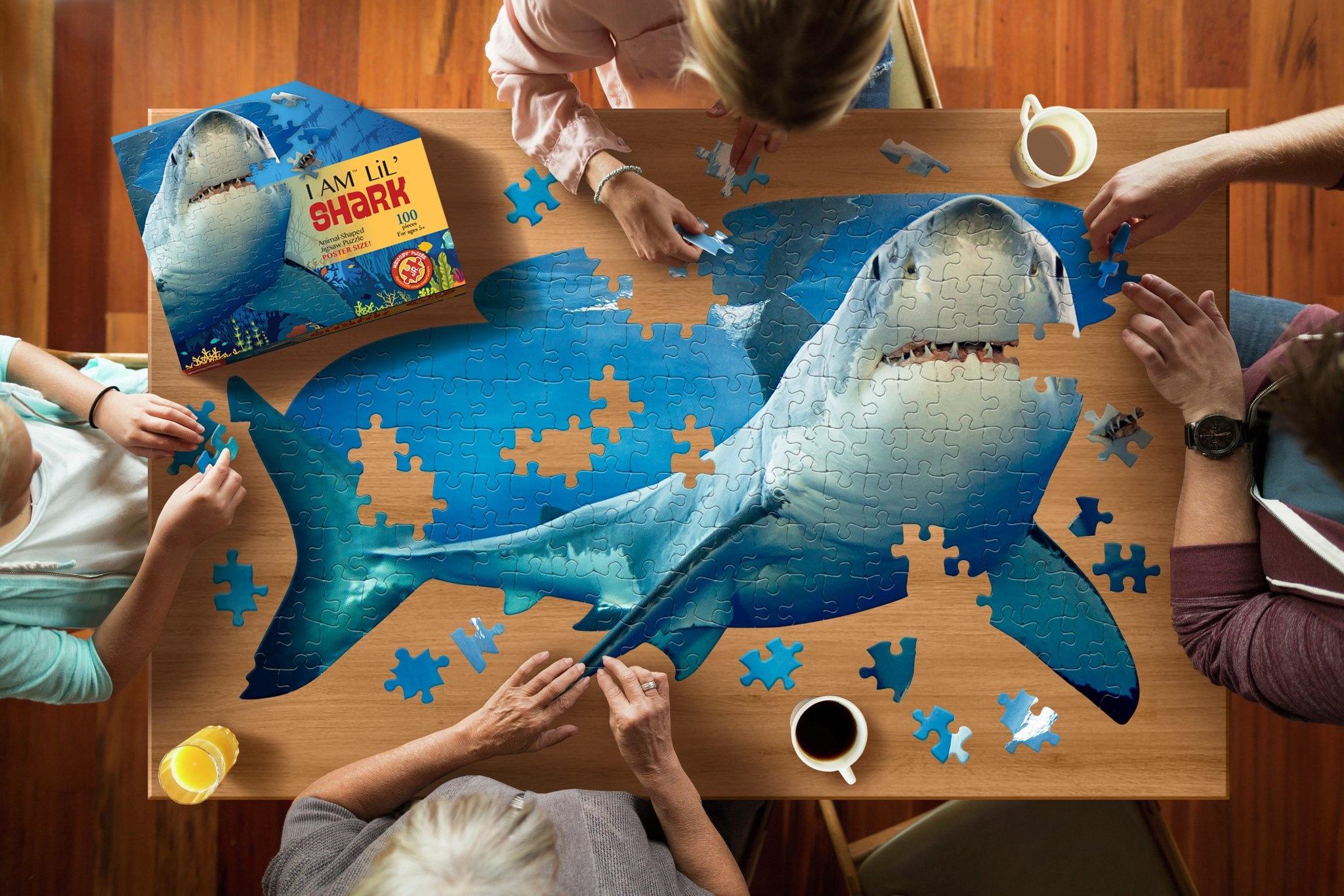 I Am Lil Shark 100  pc