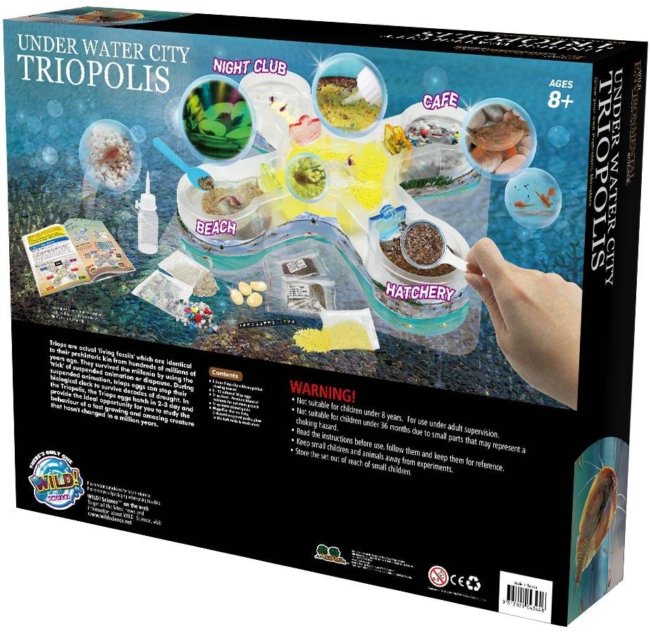 Triopolis