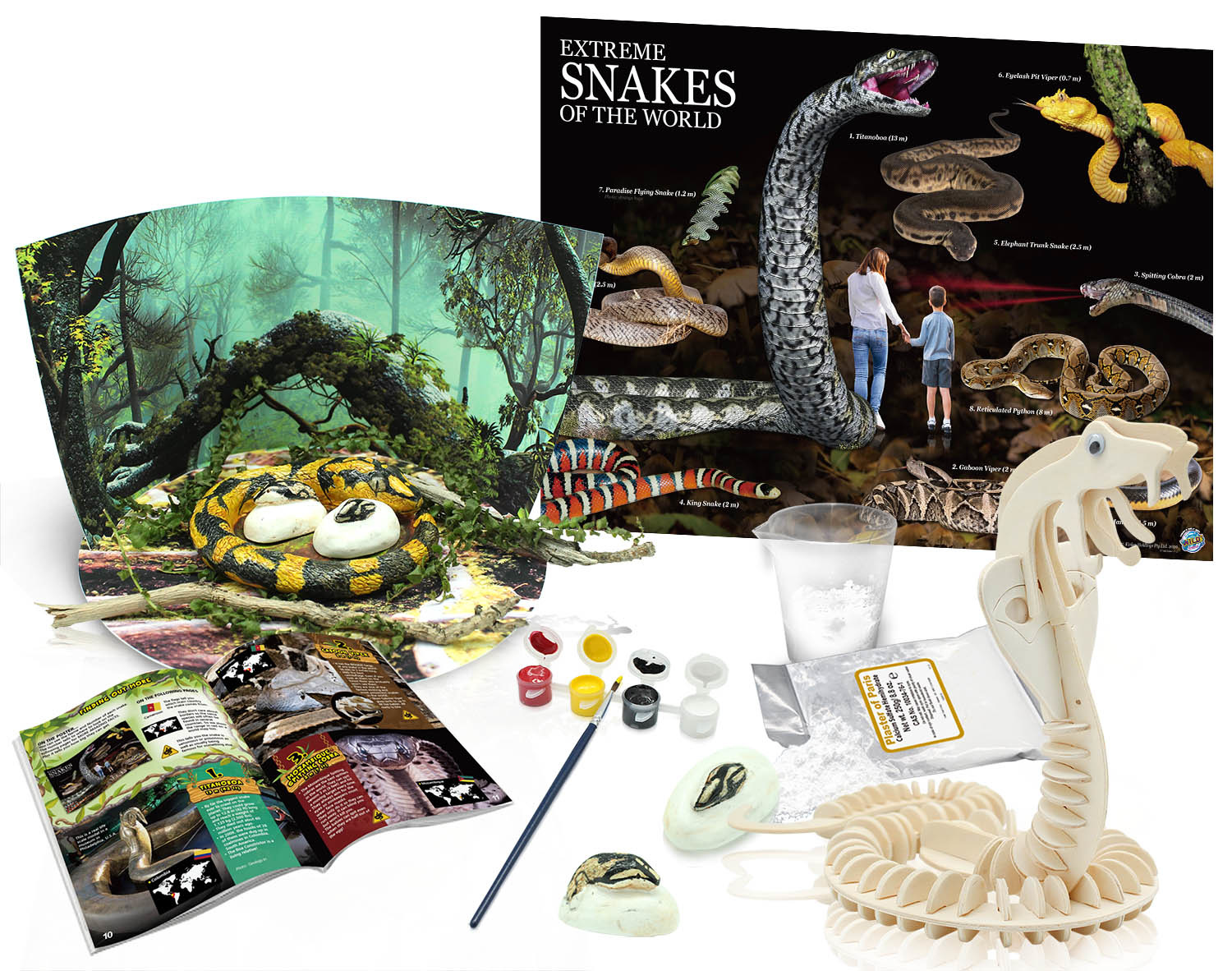 Wild Science Extreme Snakes of the World