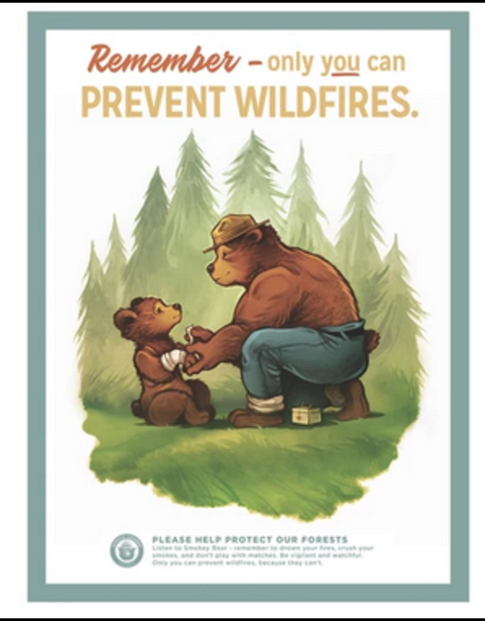 Landmark Prevent Wildfires Poster Large