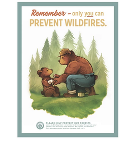 Landmark Prevent Wildfires Poster Large