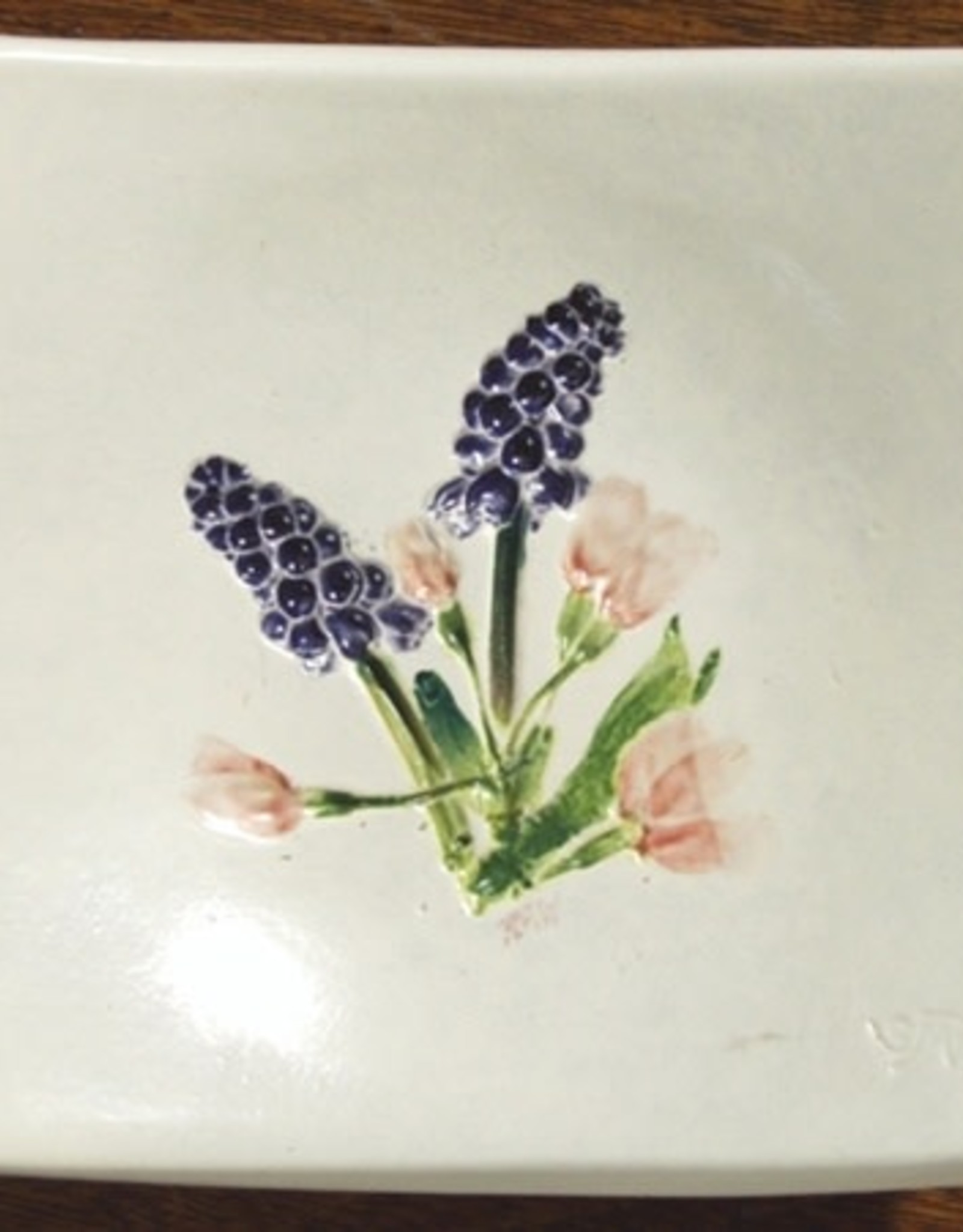 "Wave 4"" Cherry Grape Hyacinth"