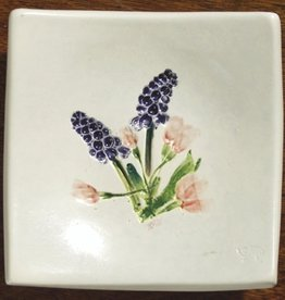 "Wave 4"" Cherry Grape Hyacinth"