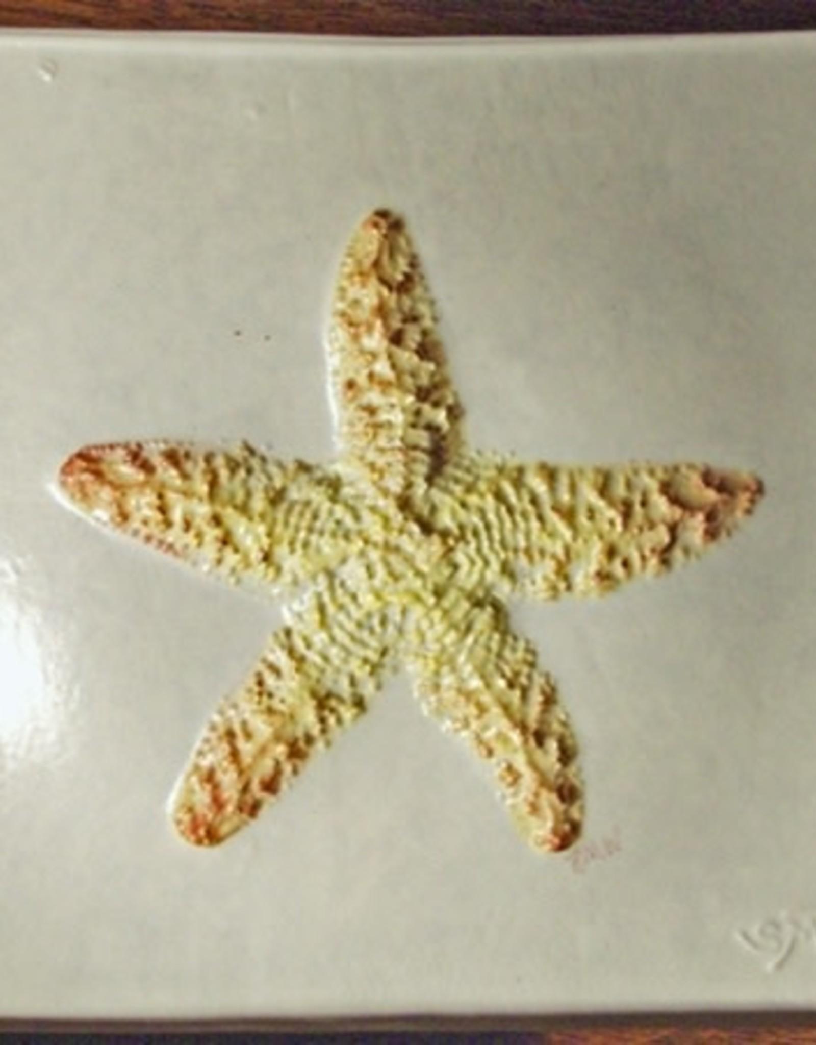 """Wave 4"""" Starfish"""