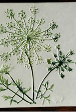 """Trivet or Tile 4.25"""" Queen Anne's Lace"""