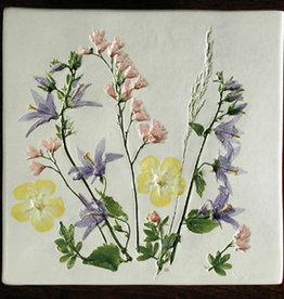 "Trivet or Tile 6"" Square Potentilla Campanula Coral Bells"