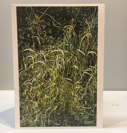 Note Card by JP, Panic Grasses, 5 x 7