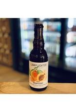 """Sour Lamplighter """"Apricot Rhapsody"""" Mixed Culture Sour Ale Aged On Whole Fruit 12.7oz Bottle - Cambridge, MA"""