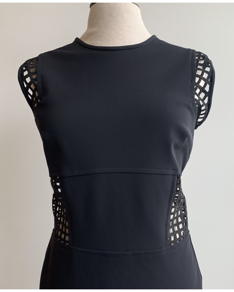Greta Constantine Yoana Lace Panel Dress