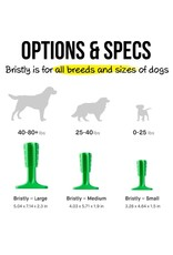 Bristly BRISTLY GREEN BRUSHING STICK TOY