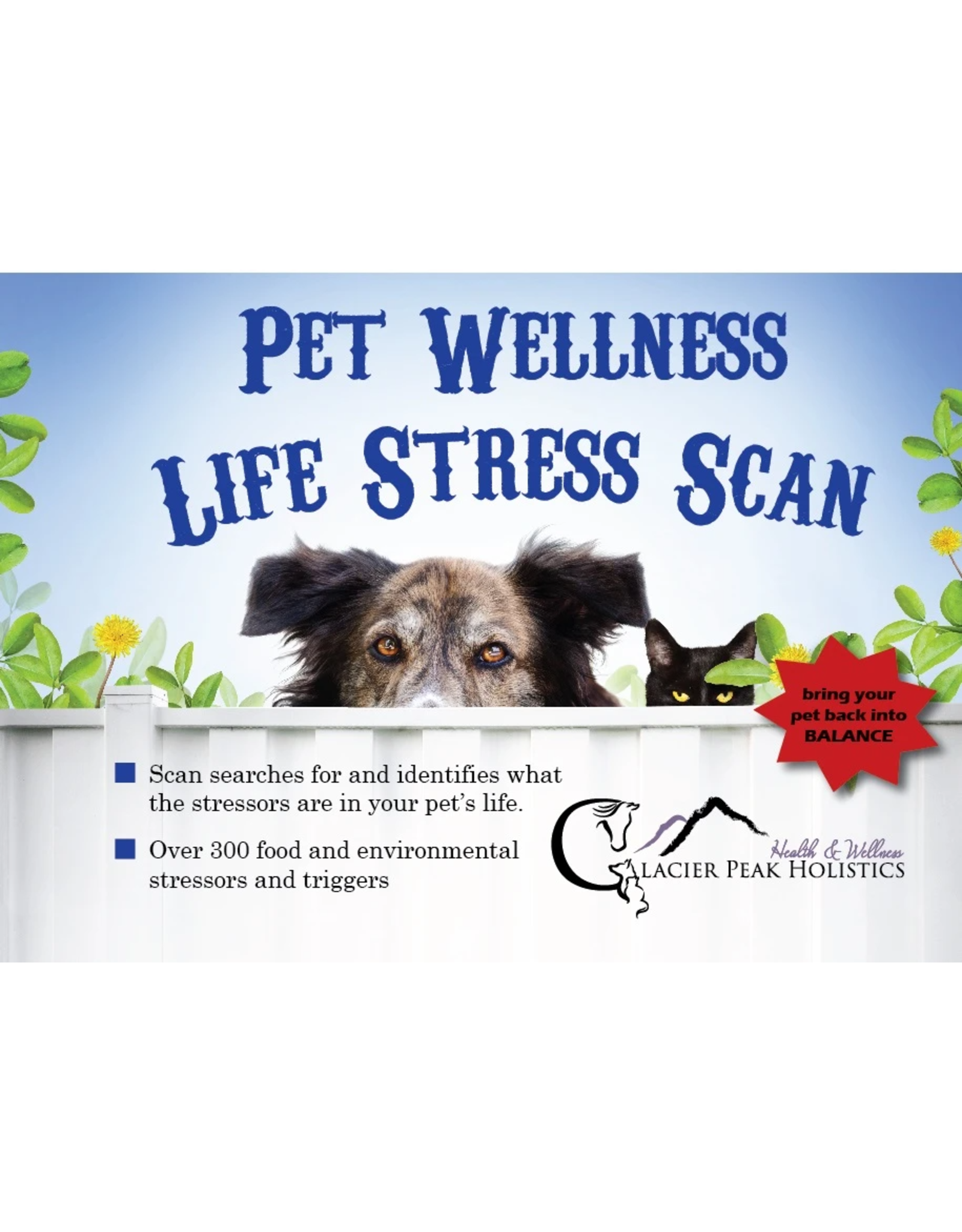 Glacier Peaks Holistics GLACIER PEAK HOLISTICS PET WELLNESS LIFE STRESS SCAN