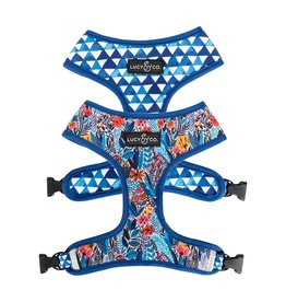 Lucy & Co. LUCY & CO. ROYAL GARDEN REVERSIBLE HARNESS