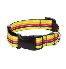 Paw Paws USA PAW PAWS MARGARITA MIX DOG COLLAR
