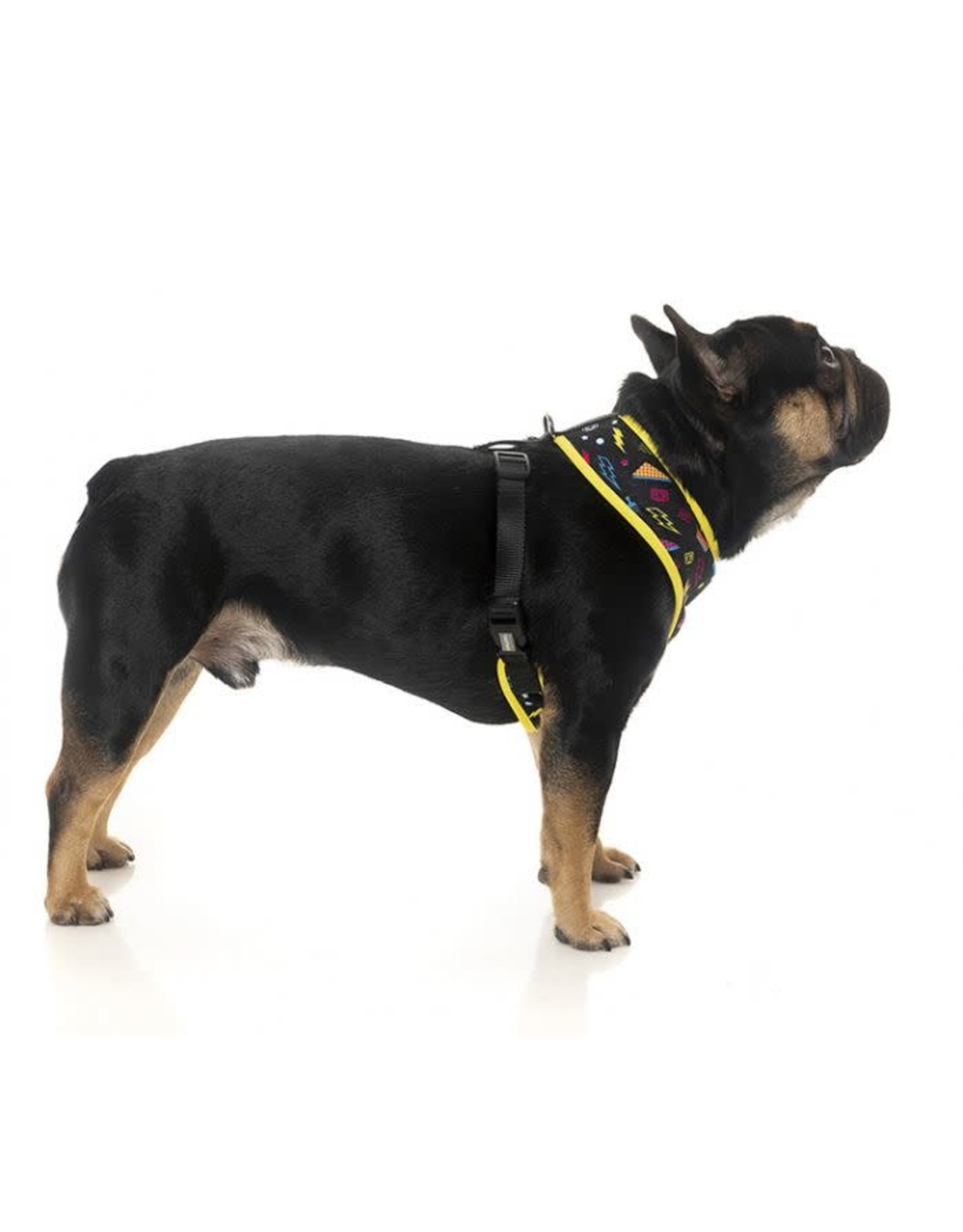 FuzzYard FUZZYARD BEL AIR DOG HARNESS