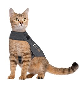 Thunderworks Inc. THUNDERSHIRT CLASSIC ANXIETY JACKET FOR CATS GREY MEDIUM
