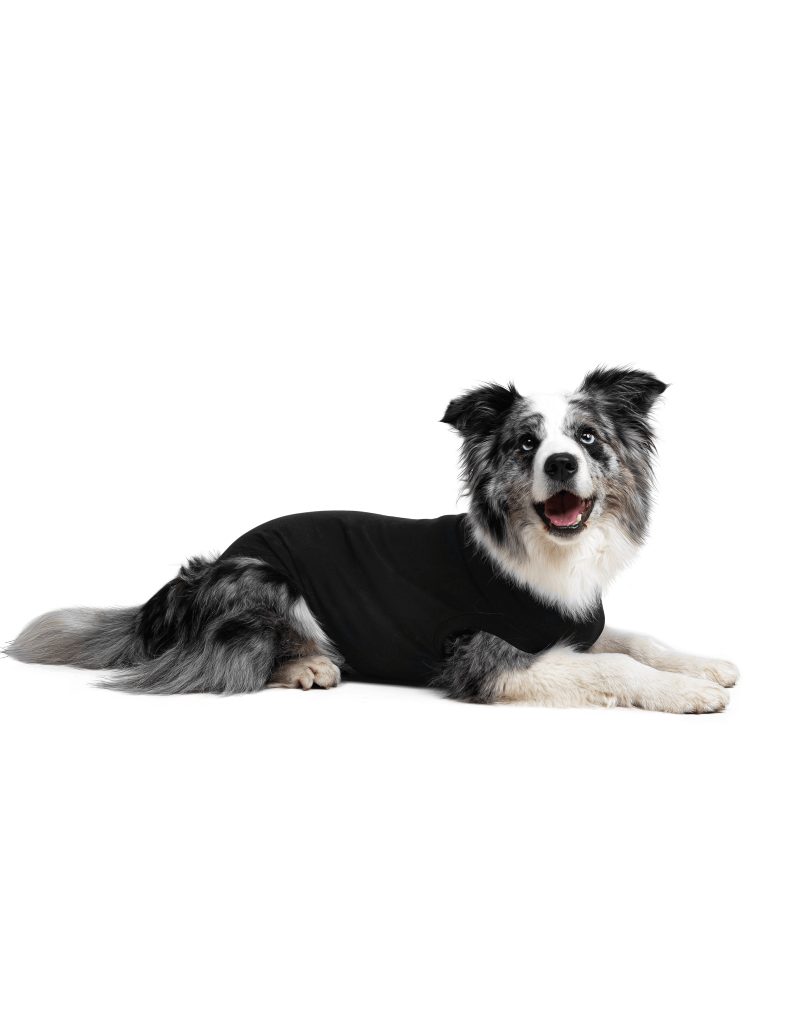 Suitical SUITICAL BLACK RECOVERY SUIT FOR DOGS