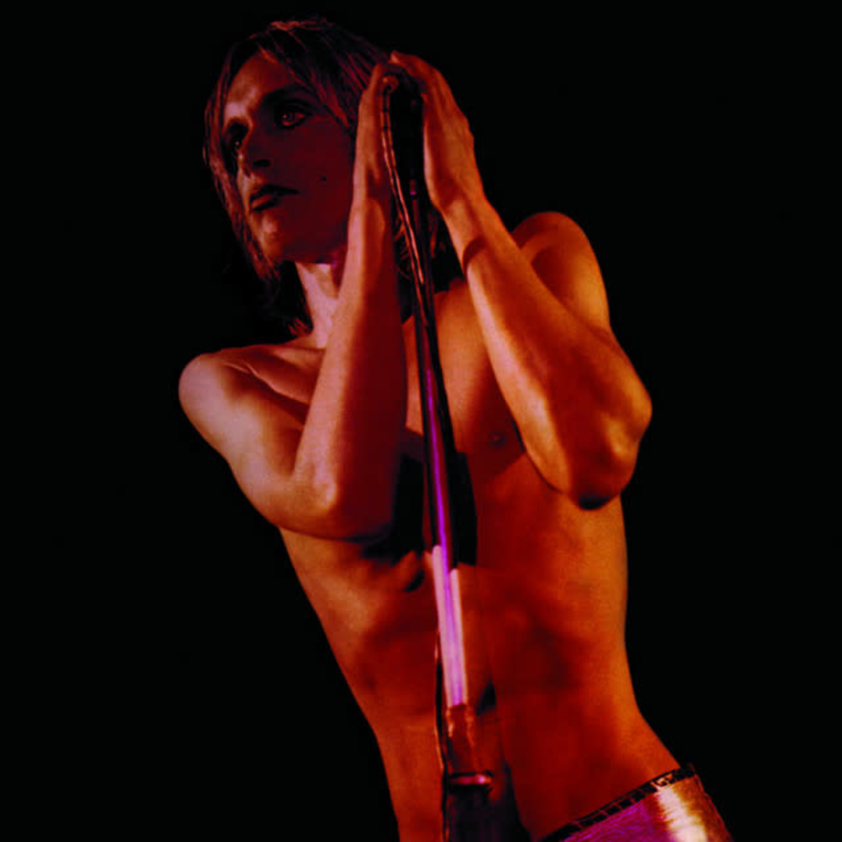 Vinyl Iggy & The Stooges - Raw Power