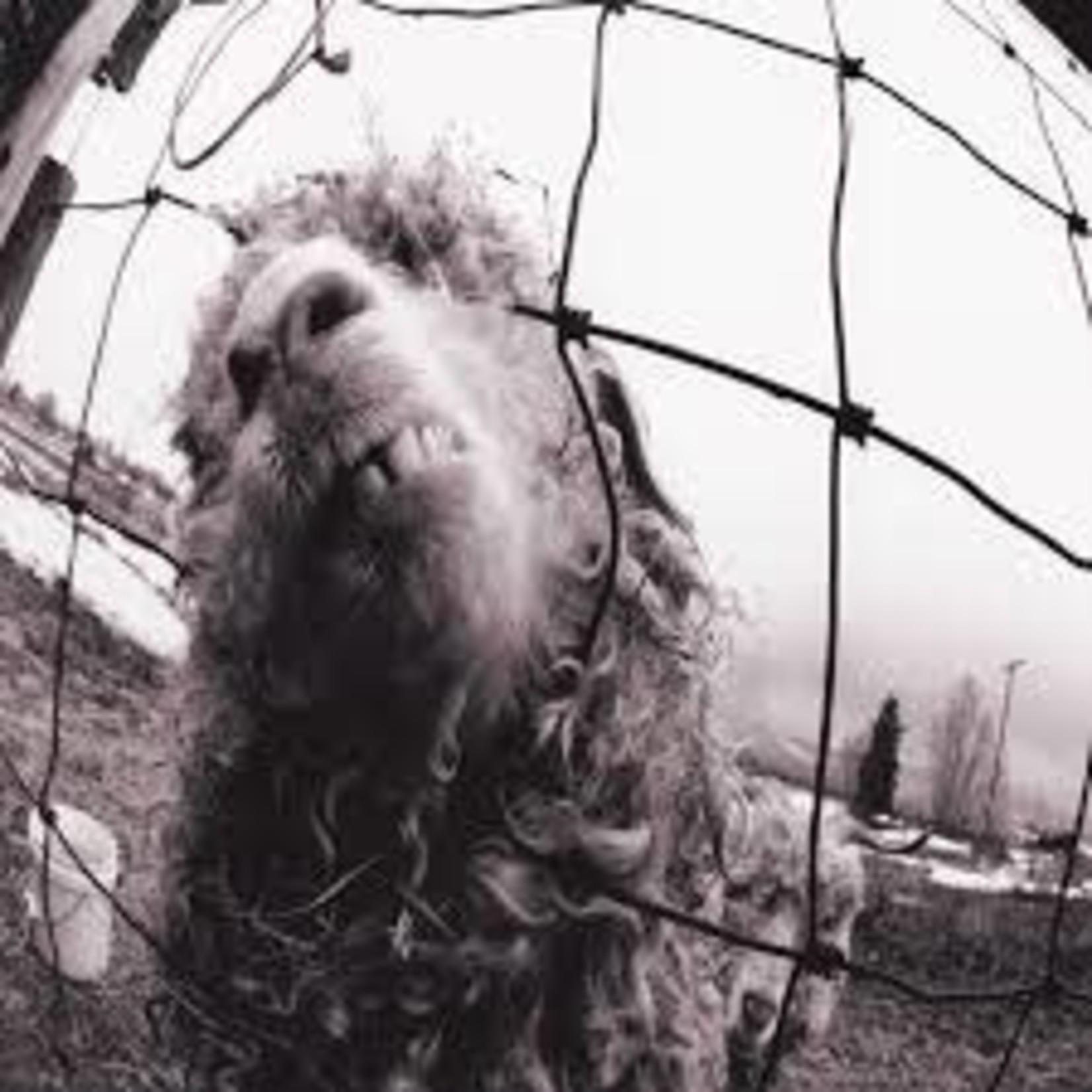 Vinyl Pearl Jam - Vs.