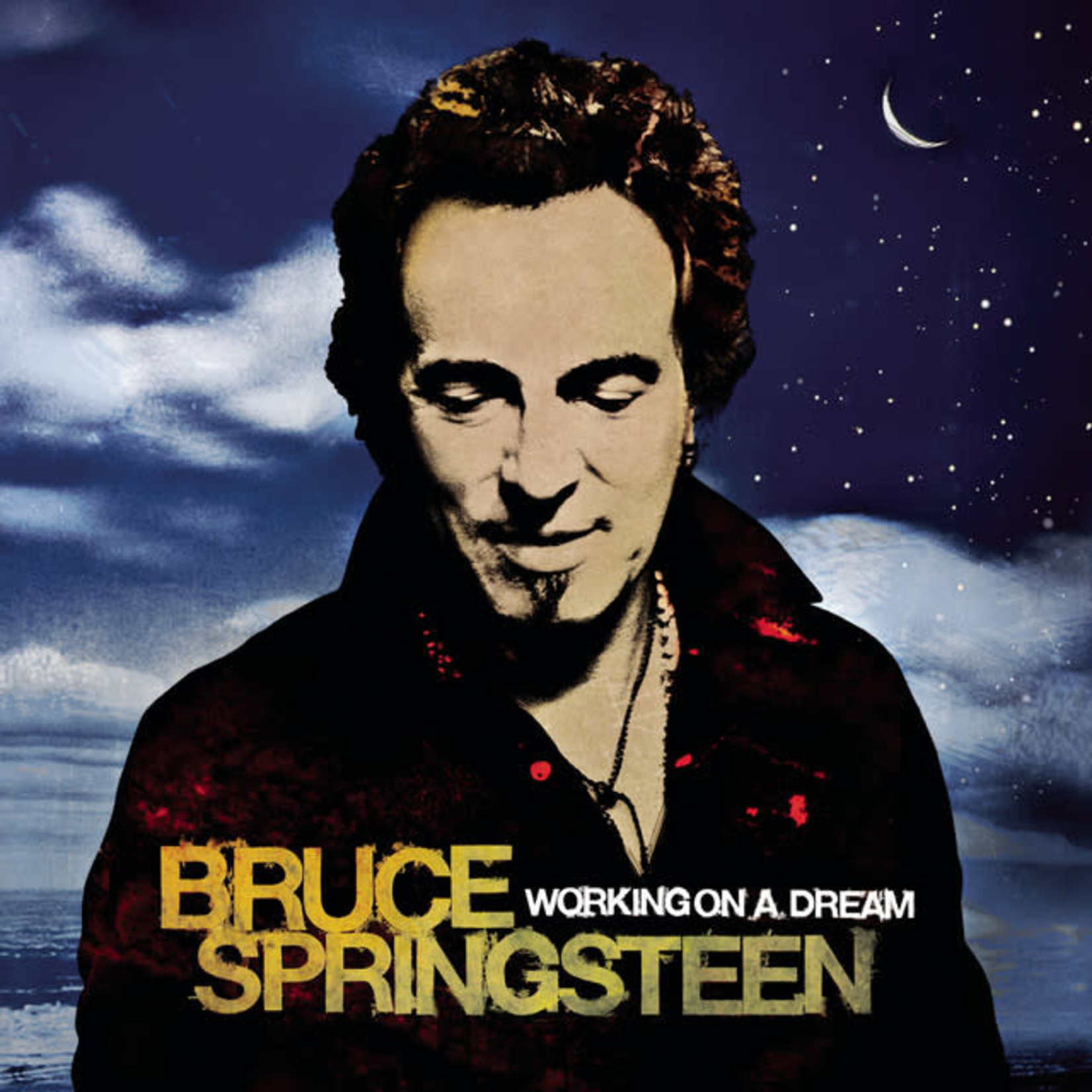 Vinyl Bruce Springsteen - Working on a Dream