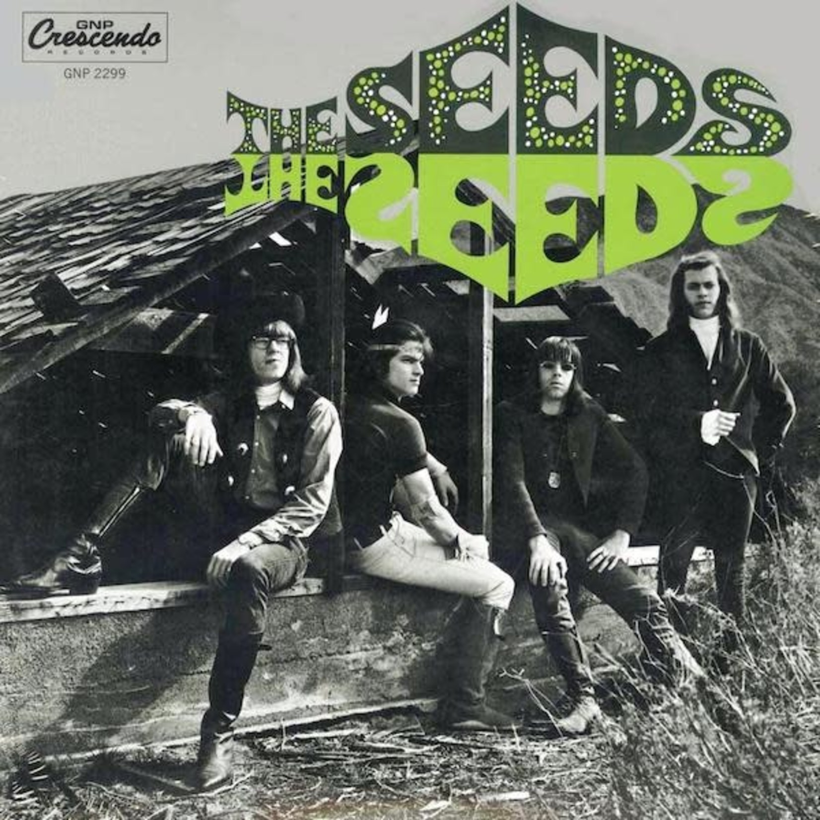 Vinyl The Seeds - ST