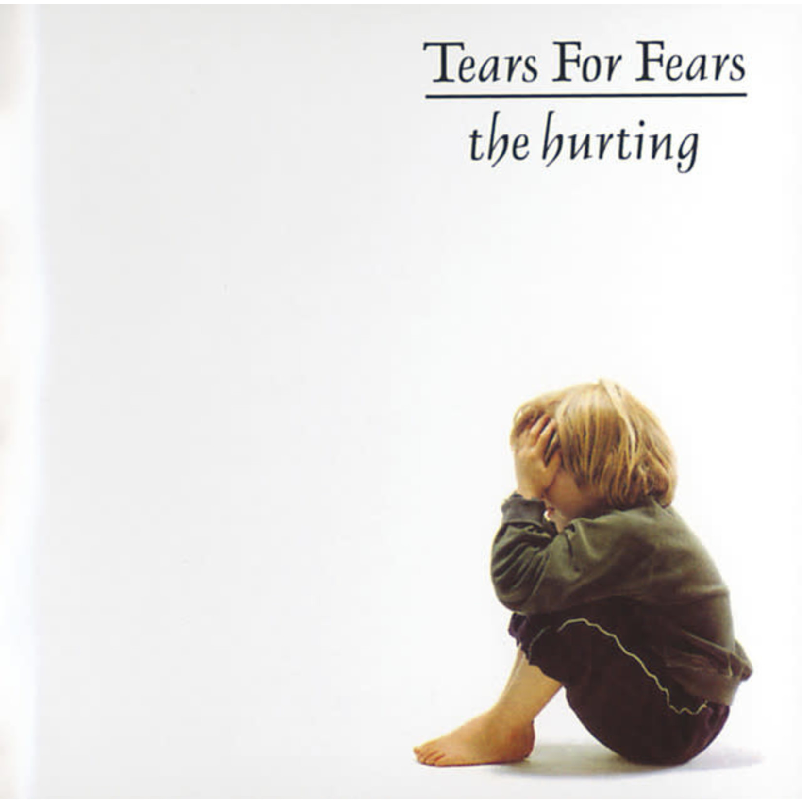 Vinyl Tears For Fears - The Hurting