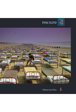 Vinyl Pink Floyd - Momentary Lapse of Reason