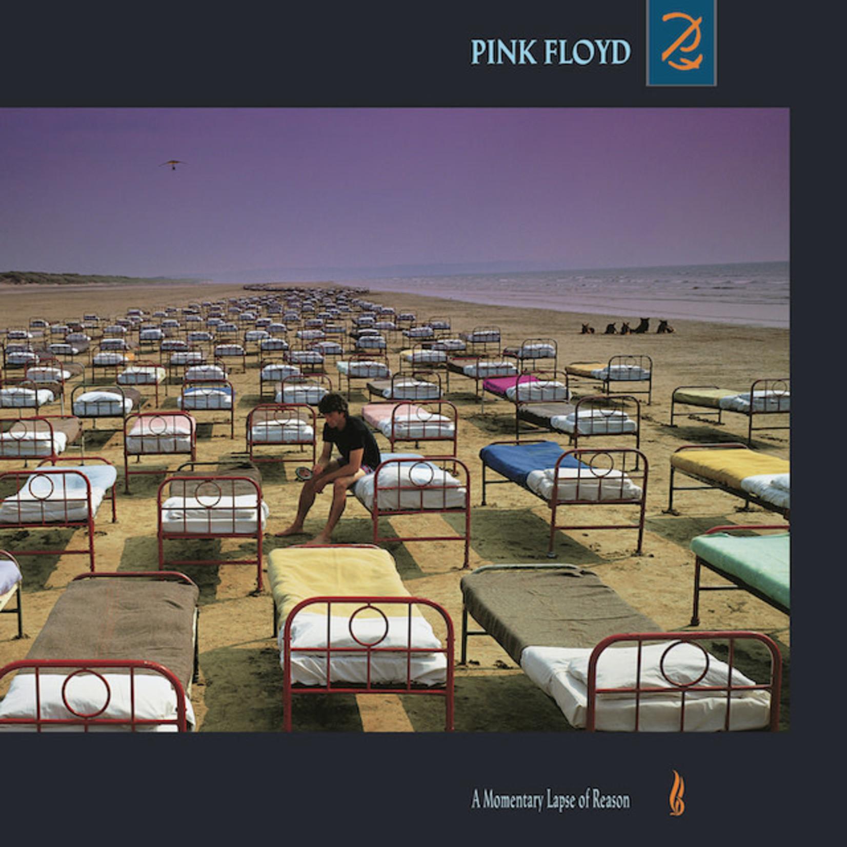 Vinyl Pink Floyd - Momentary Lapse of Reason