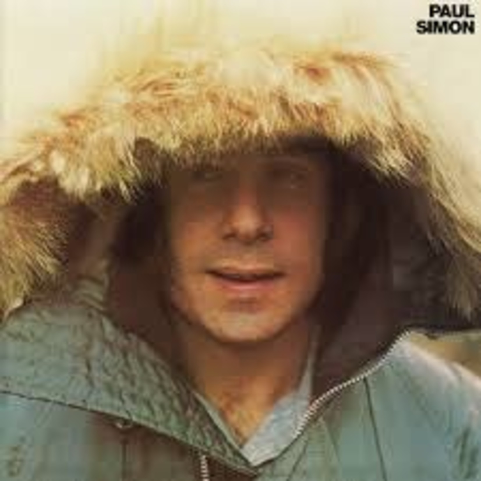 Vinyl Paul Simon - ST