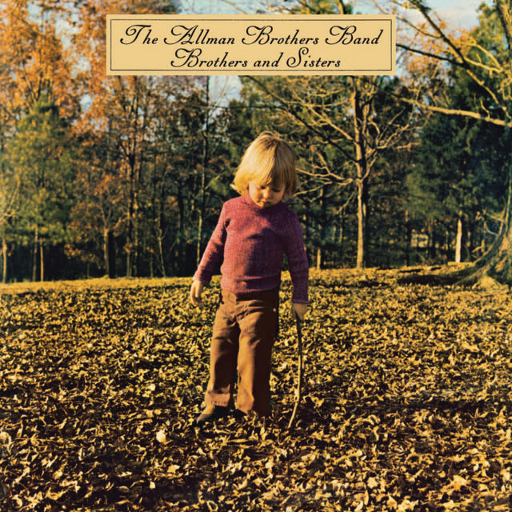 Vinyl The Allman Brothers Band - Brothers and Sisters