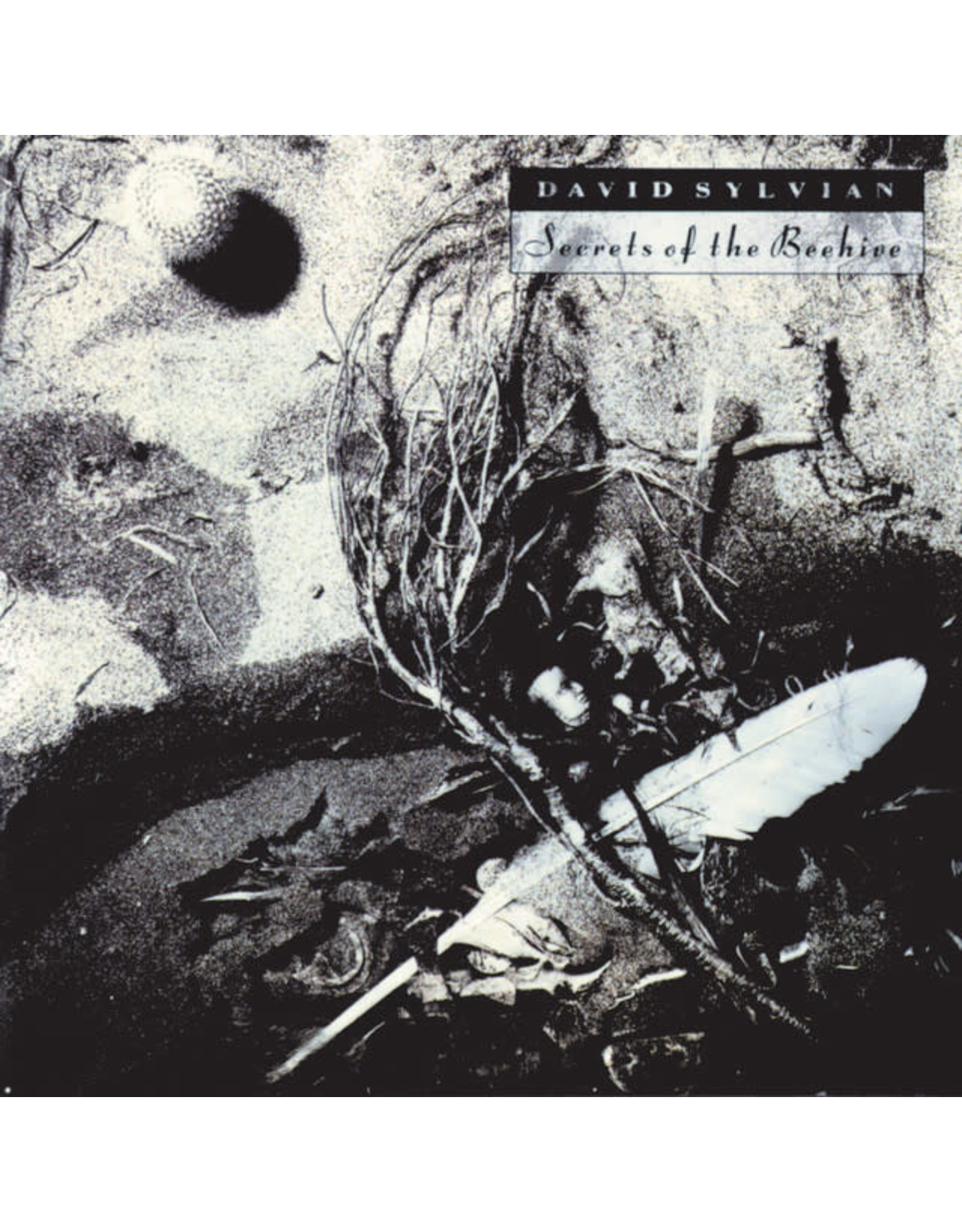 Vinyl David Sylvian - Secrets of the Beehive