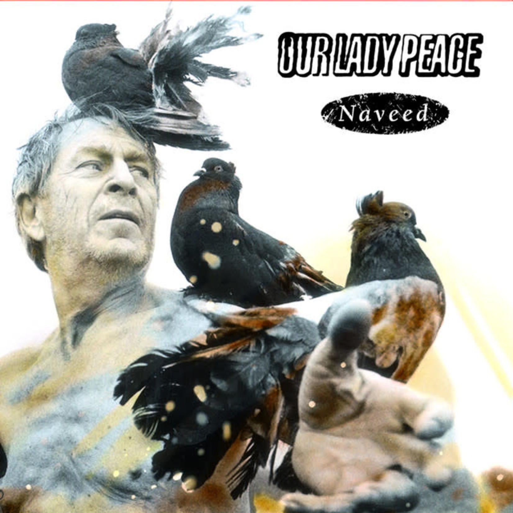 Vinyl Our Lady Of Peace - Naveed