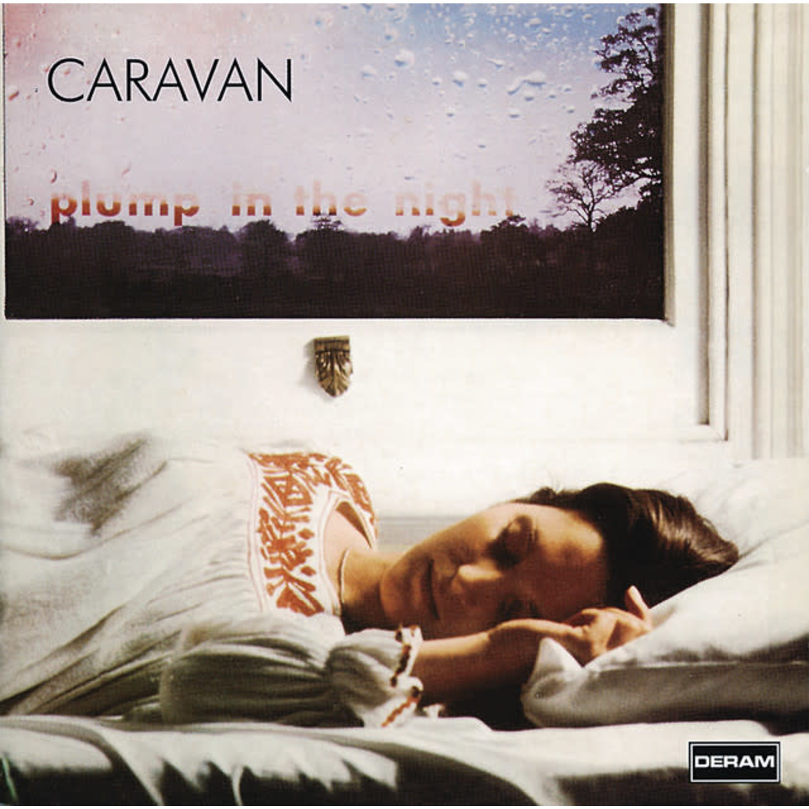 Vinyl Caravan - For Girls Who Grow Plump In The Night