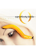 Vinyl Perfect Circle - Thirteenth Step