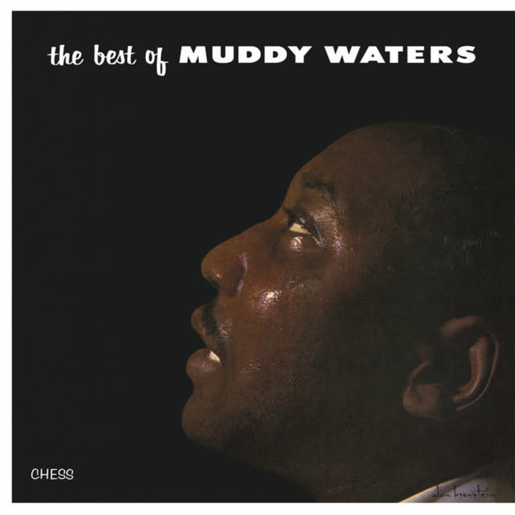 Vinyl Muddy Waters - The Best Of