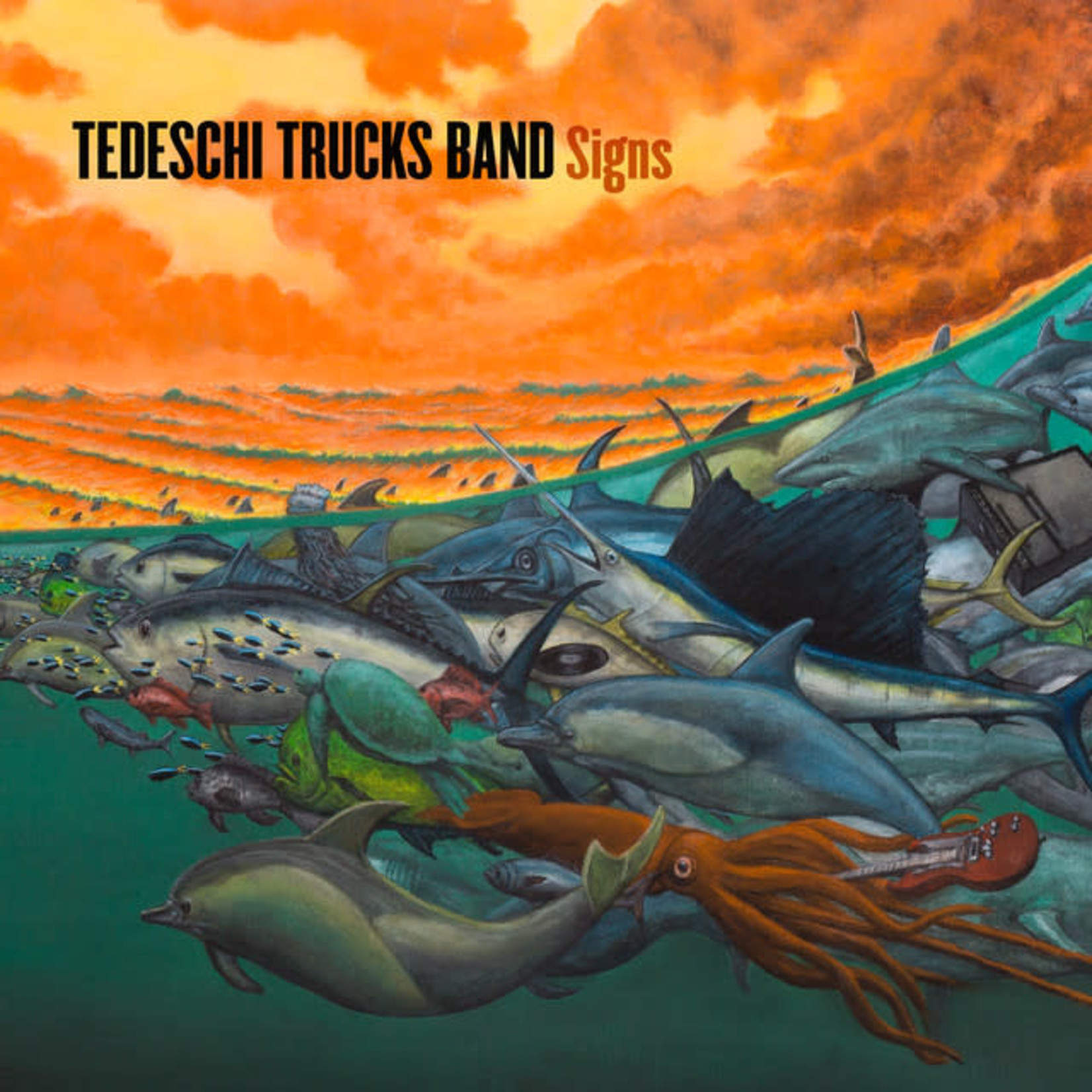 Vinyl Tedeschi Trucks Band - Signs