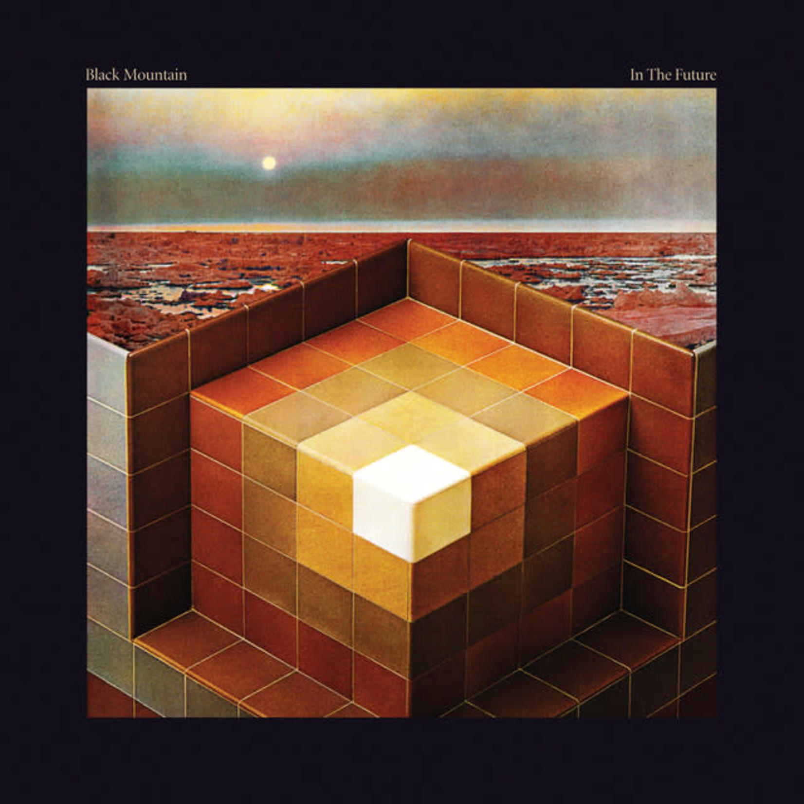 Vinyl Black Mountain - In The Future  $$