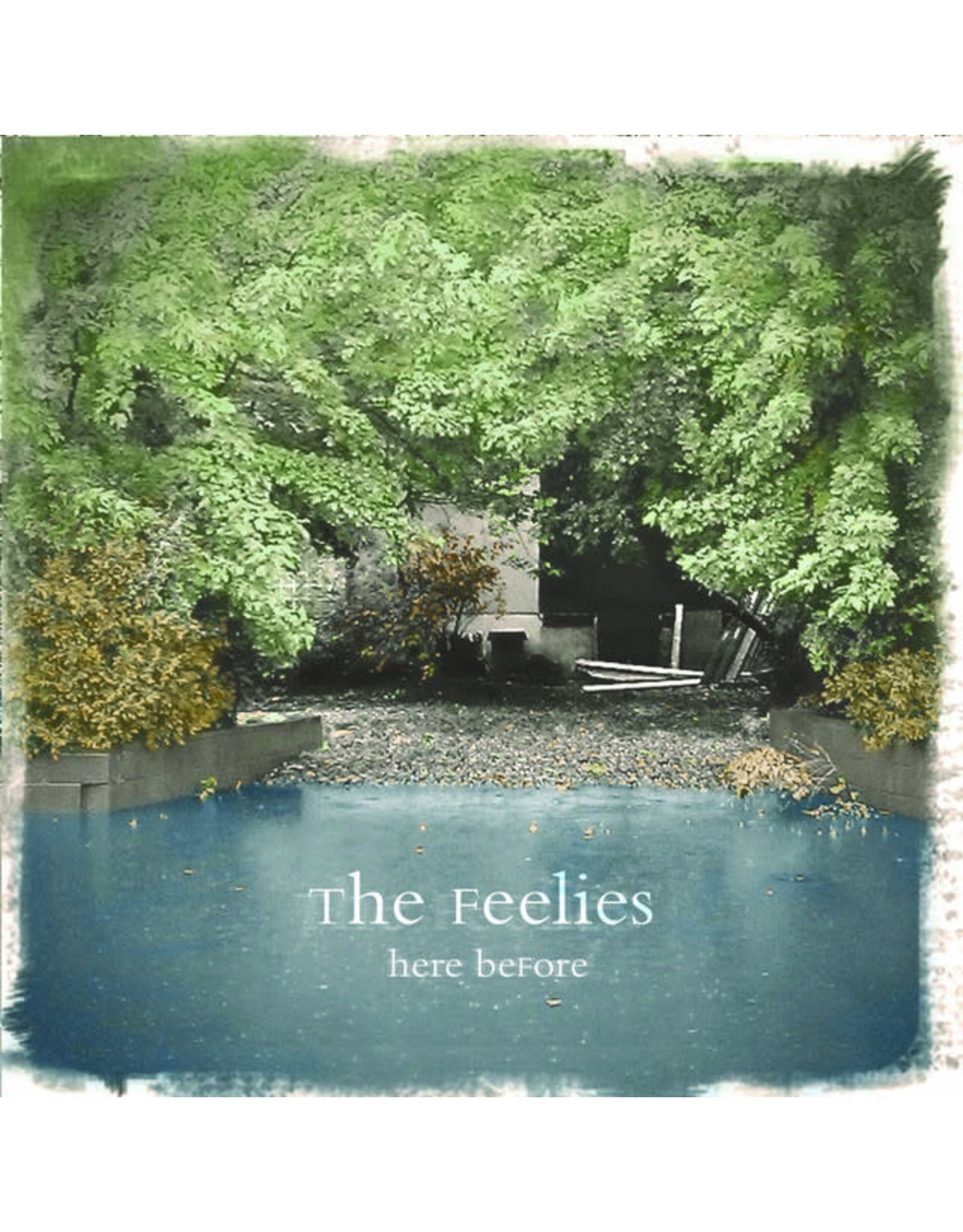 Vinyl Feelies - Here Before
