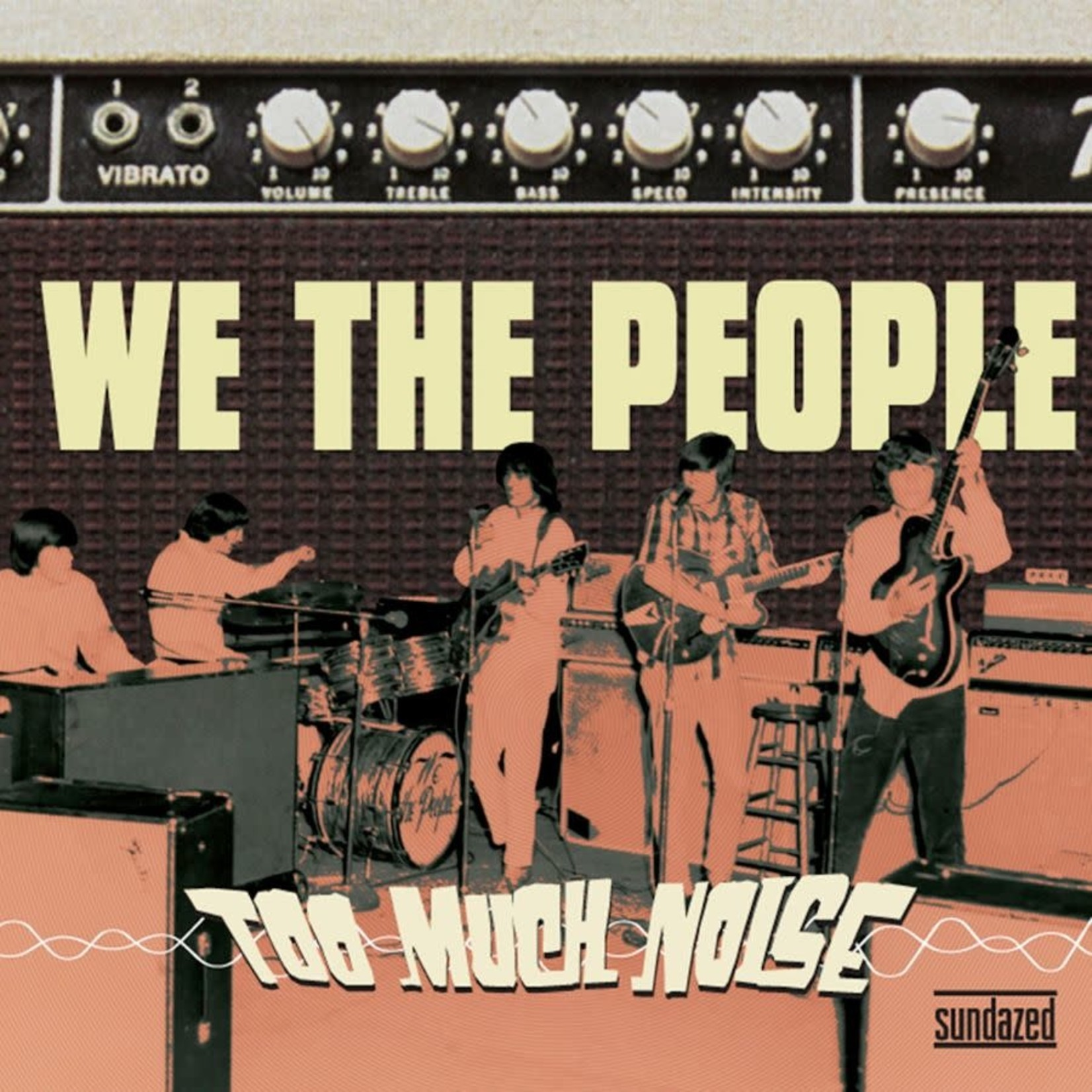 Vinyl We The People - Too Much Noise