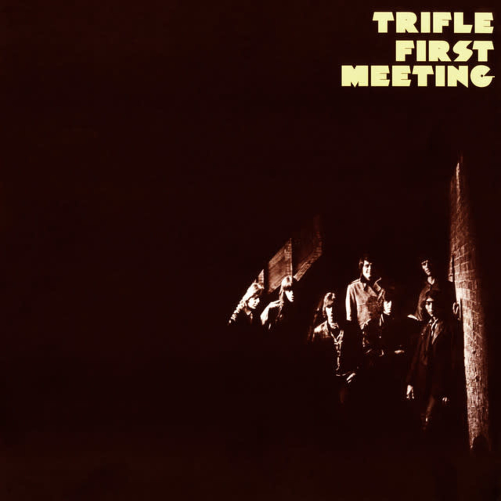 Vinyl Trifle - First Meeting