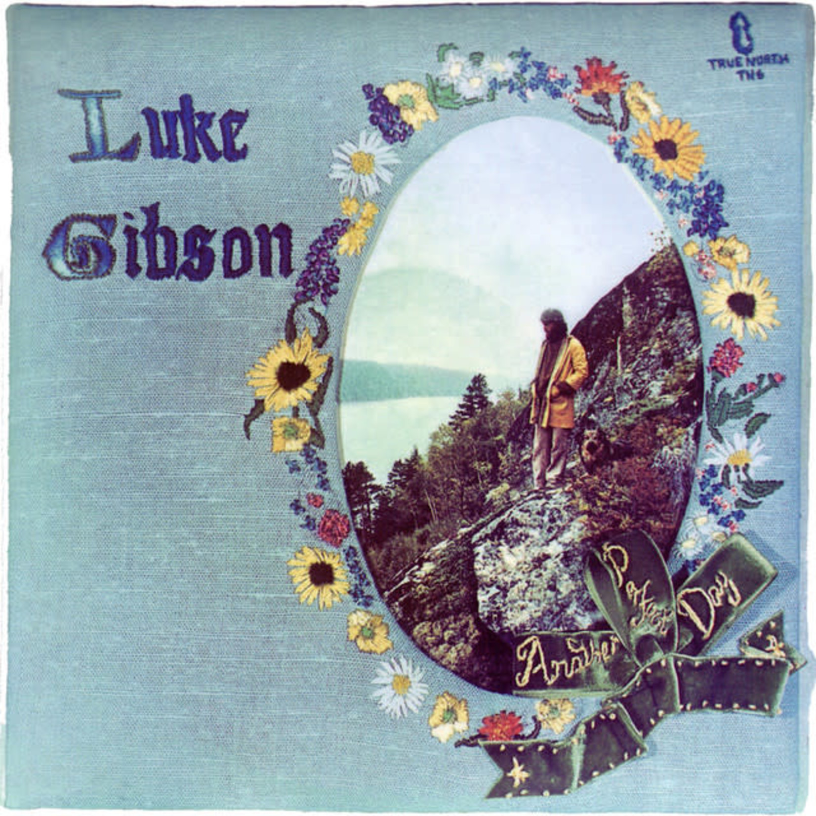 Vinyl Luke Gibson - Another Perfect Day