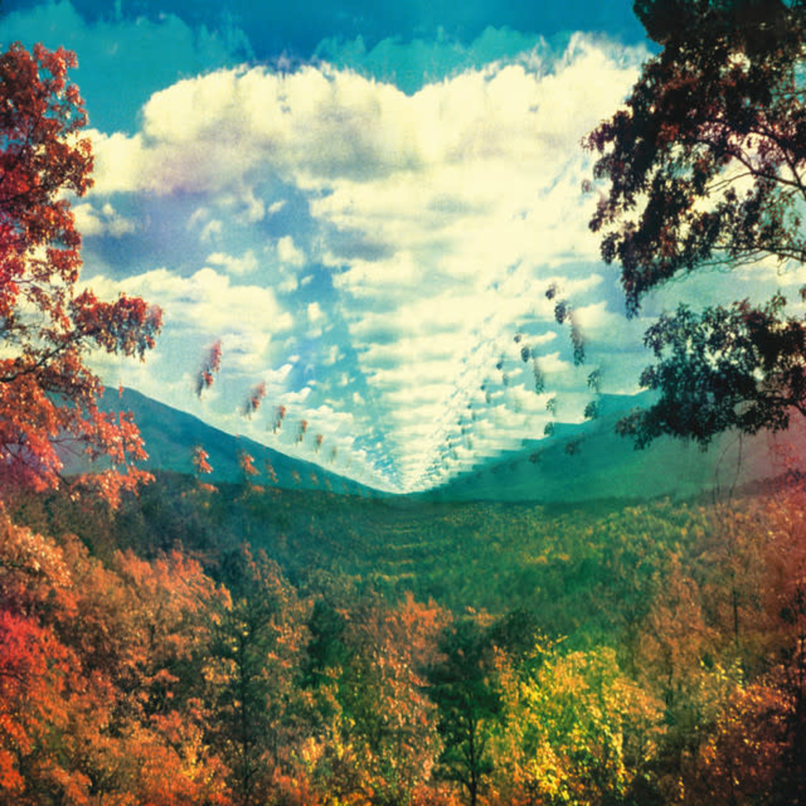 Vinyl Tame Impala - Innerspeaker