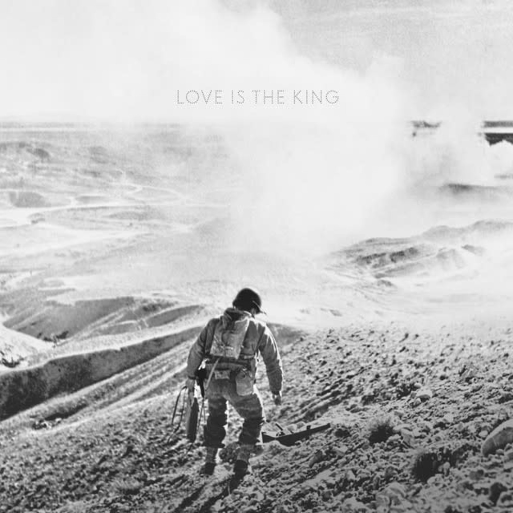 Vinyl Jeff Tweedy - Love Is The King