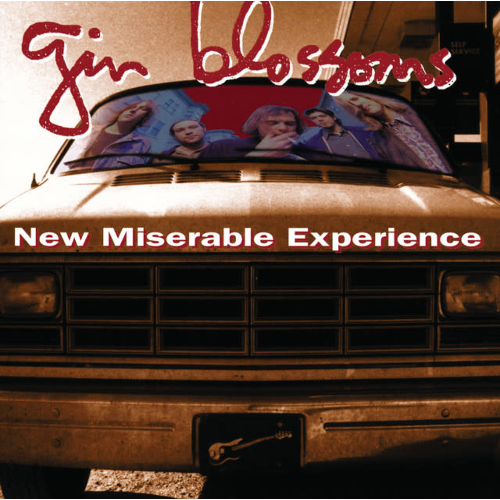 Vinyl Gin Blossoms - New Miserable Experience