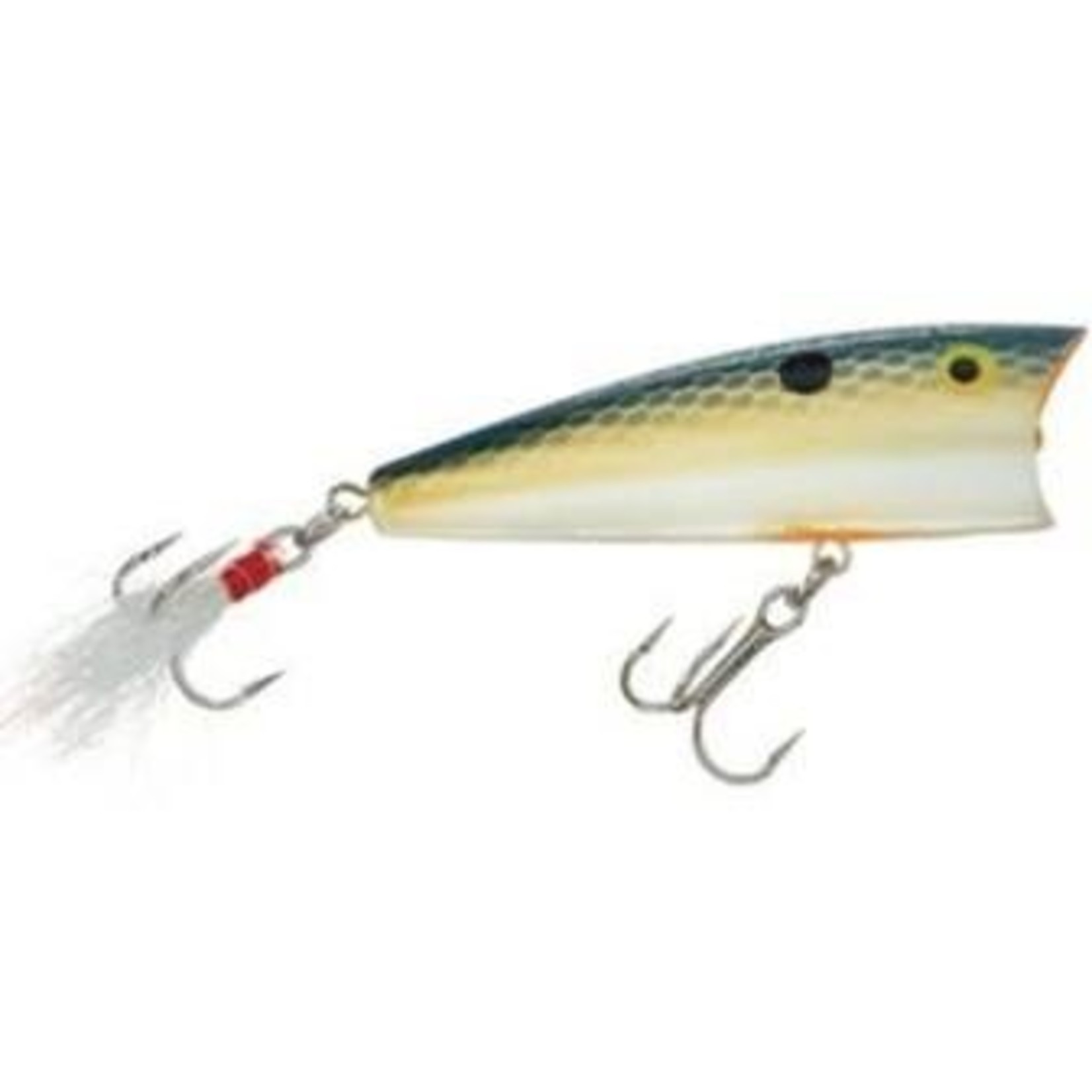 "1/2"", 1/4 oz, Foxy Shad, Floating Rebel P6075 Pop-R Topwater Bait, 2"