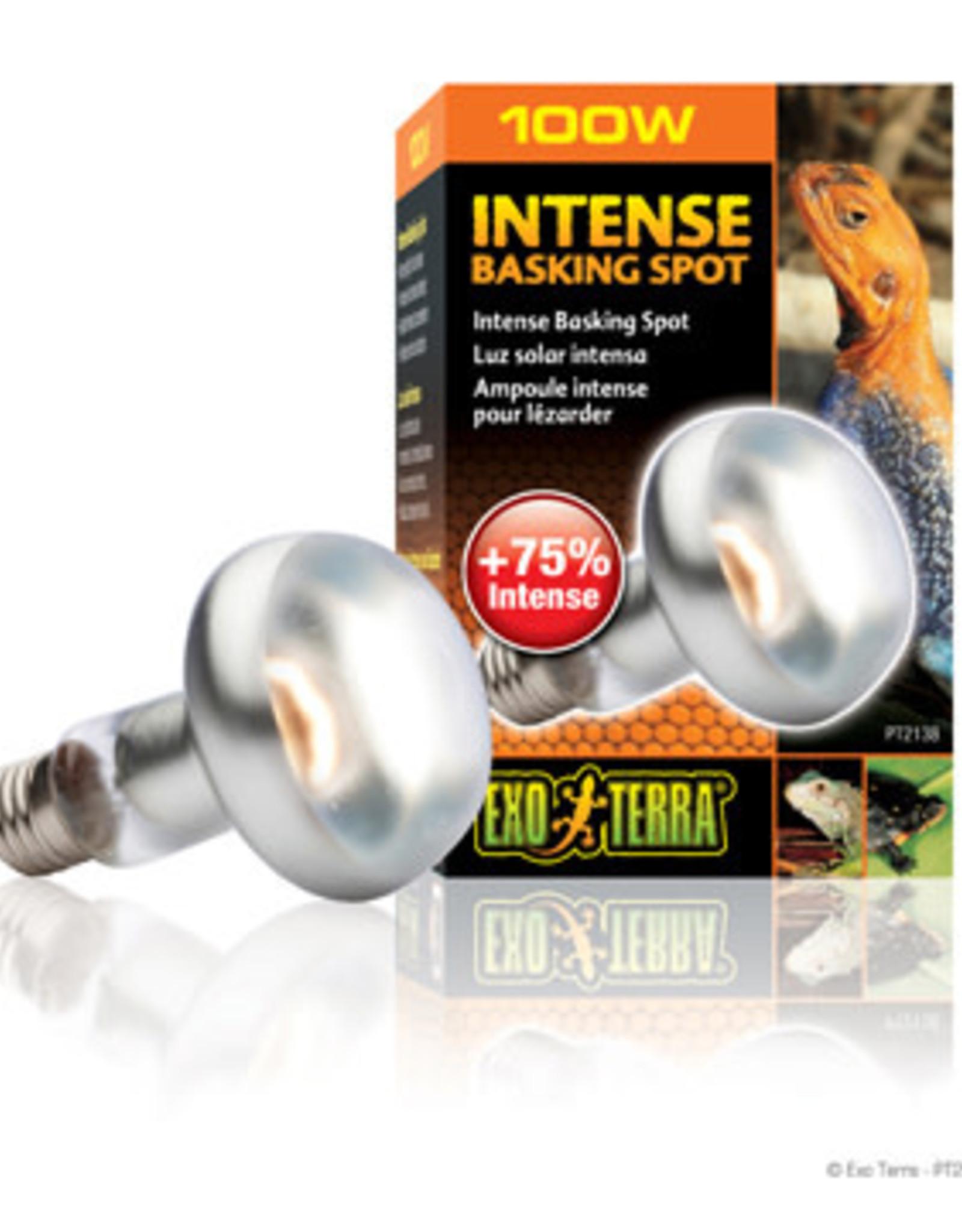 EXO-TERRA Exo Terra Intense Basking Spot Lamp, 100W
