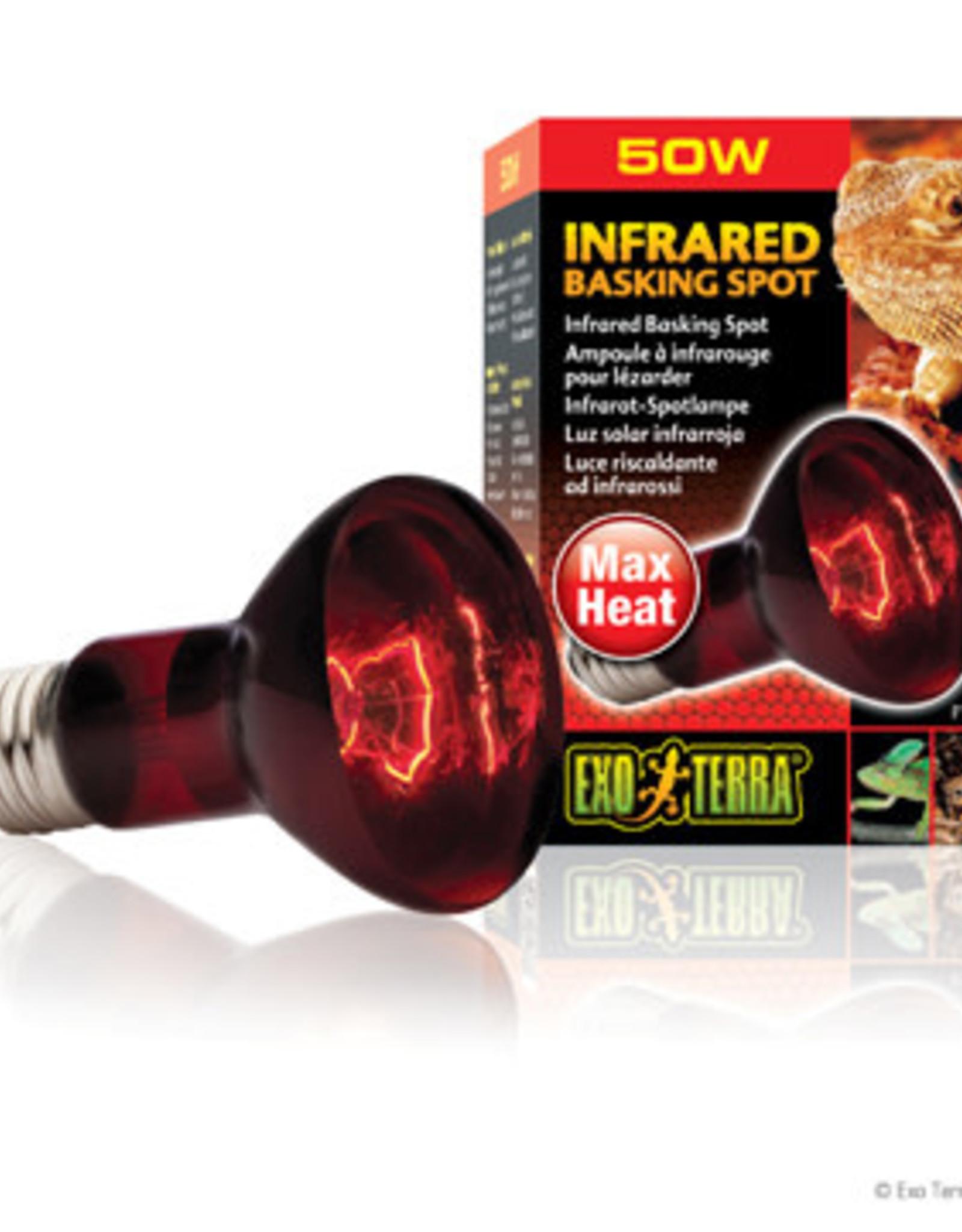 EXO-TERRA Exo Terra Infrared Basking Spot - R20 / 50W