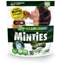 Minties MINTIES DNTL TNY/SM