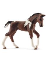 SCHLEICH SCHLEICH HORSE CLUB - TRAKEHNER FOAL