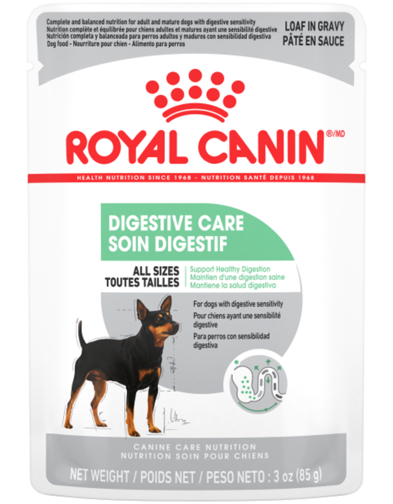 Royal Canin RC CCN Digestive Care Loaf in Gravy Pouch 85 g